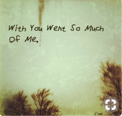 with you went so much